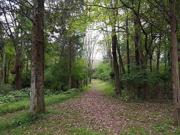 The Skippack Creek Loop Trail in Evansburg State Park