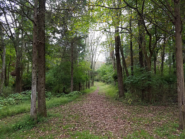 The Skippack Creek Loop Trail in Evansburg State Park
