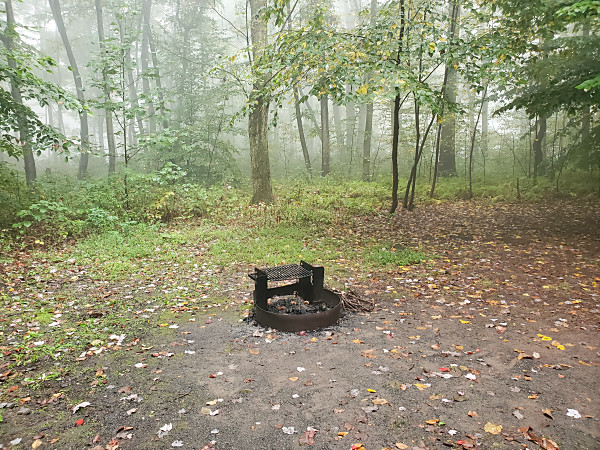 This was our view from the camper. During a brief break from the rain on Saturday evening, the fog rolled in.